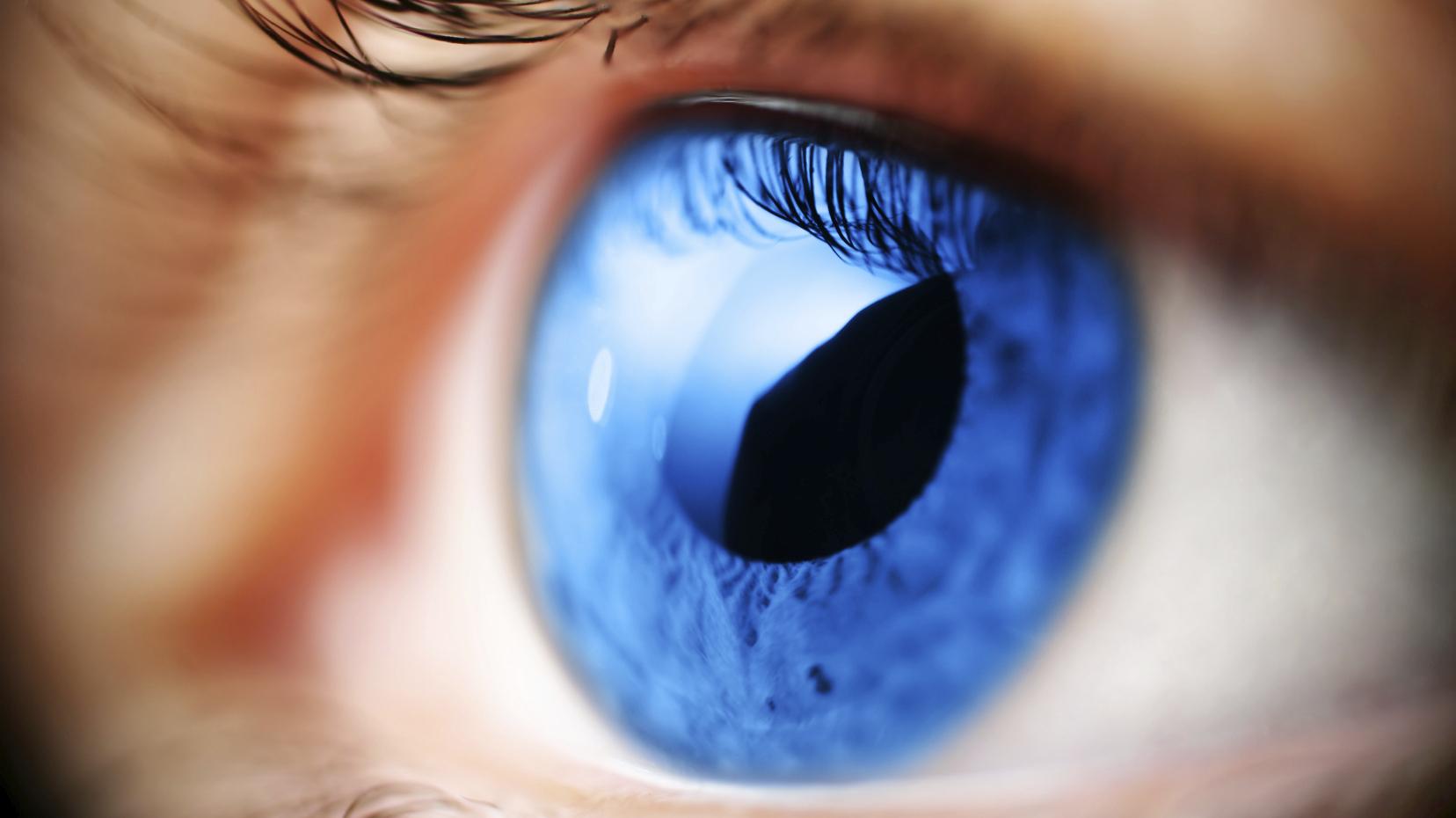26 de maio – Dia Nacional de Combate ao Glaucoma.