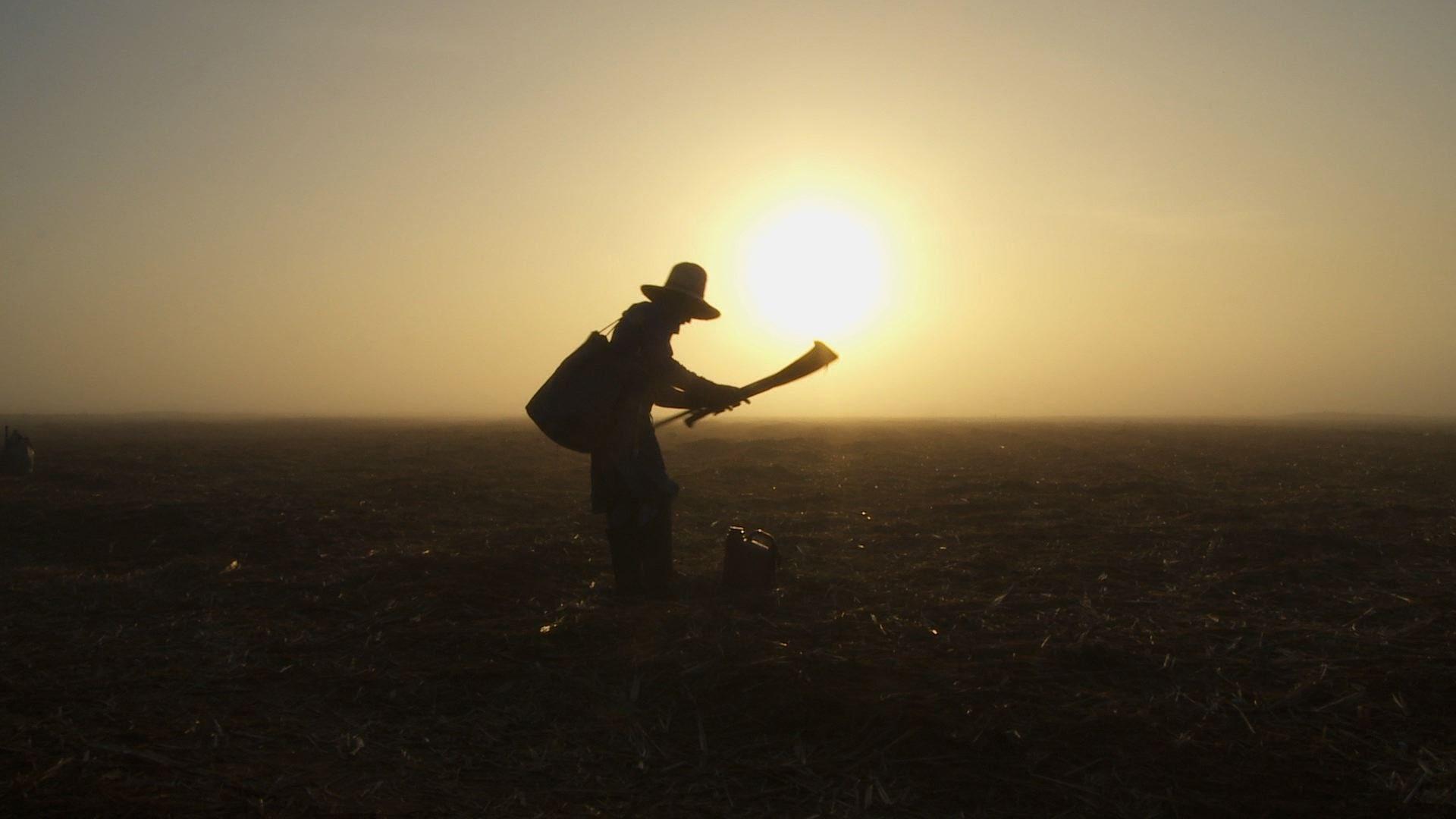 You are currently viewing 25 de maio – Dia do Trabalhador Rural