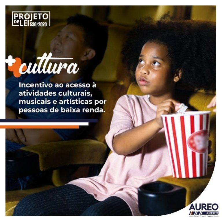 Oportunidade e cultura - PL 530/2020